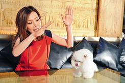 ※狗狗因嗅到Jade身中的孕味而呷醋,經常在家四處小便。